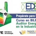 Curso Auditor Energético en la Industria Ede Ingenieros
